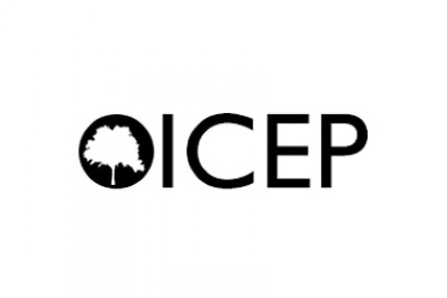 ICEP Conference 2017