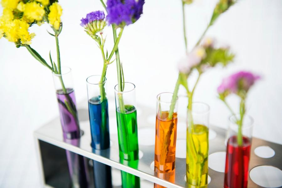 Flowers grow in test tubes filled with various colours of water